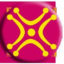 4D logo p